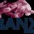 BANX Broker Aktiendepot